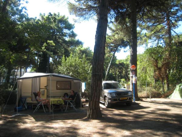 Camping marina ravenna riviera adriatica piazzole parcheggio camper in romagna - Campeggio bagno di romagna ...