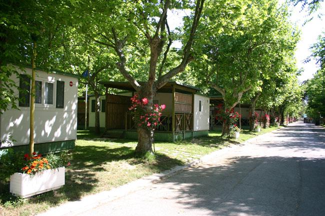 Villaggio Camping Rimini Con Animazione E Piscina